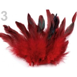 Decorative Feathers  150469-4